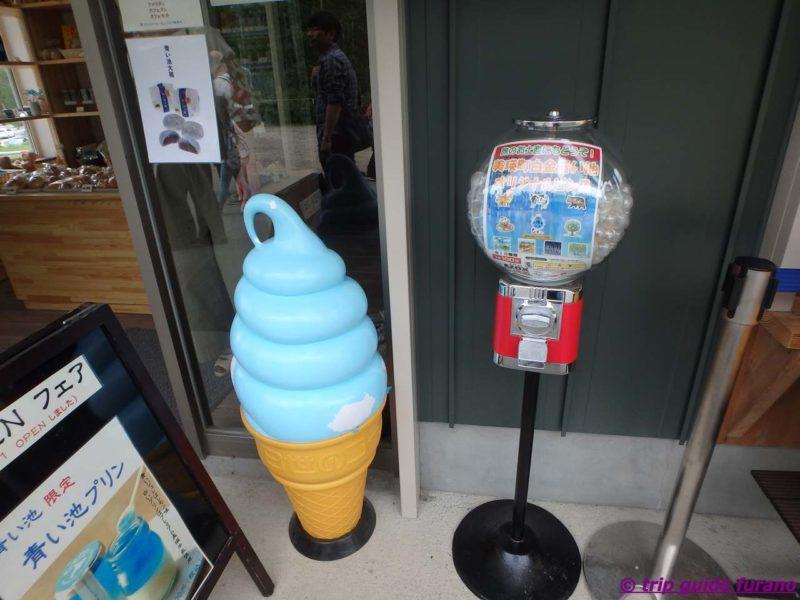 美瑛 ふらの 青い池 6月 きれい 売店