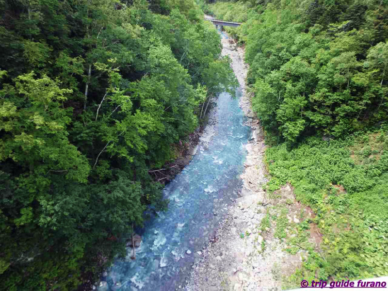 美瑛 ふらの 白ひげの滝 6月 きれい